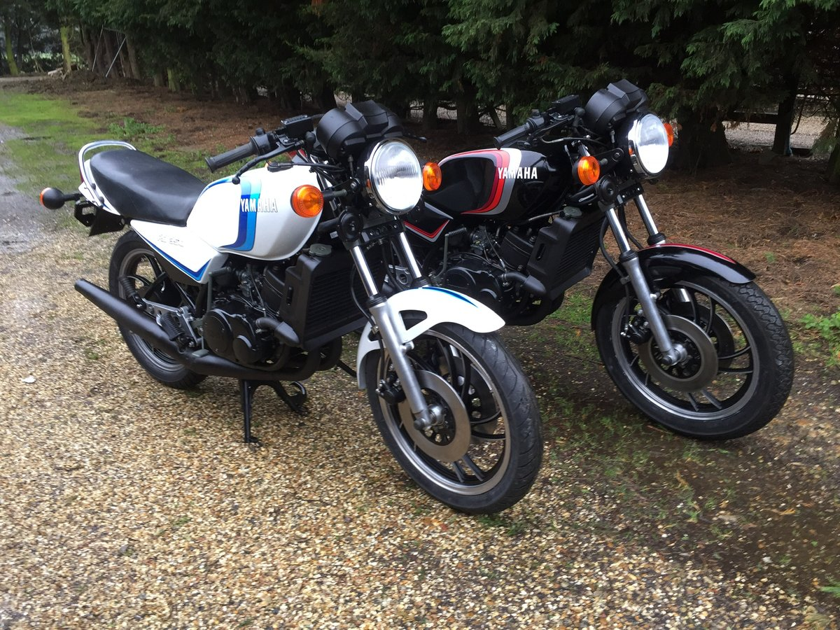 1981 Yamaha RD350LC projects and restored bikes in stock For Sale (picture 5 of 5)