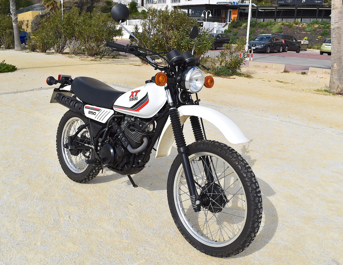 1988 Incredible Original & Unrestored Yamaha XT-250 For Sale (picture 3 of 6)