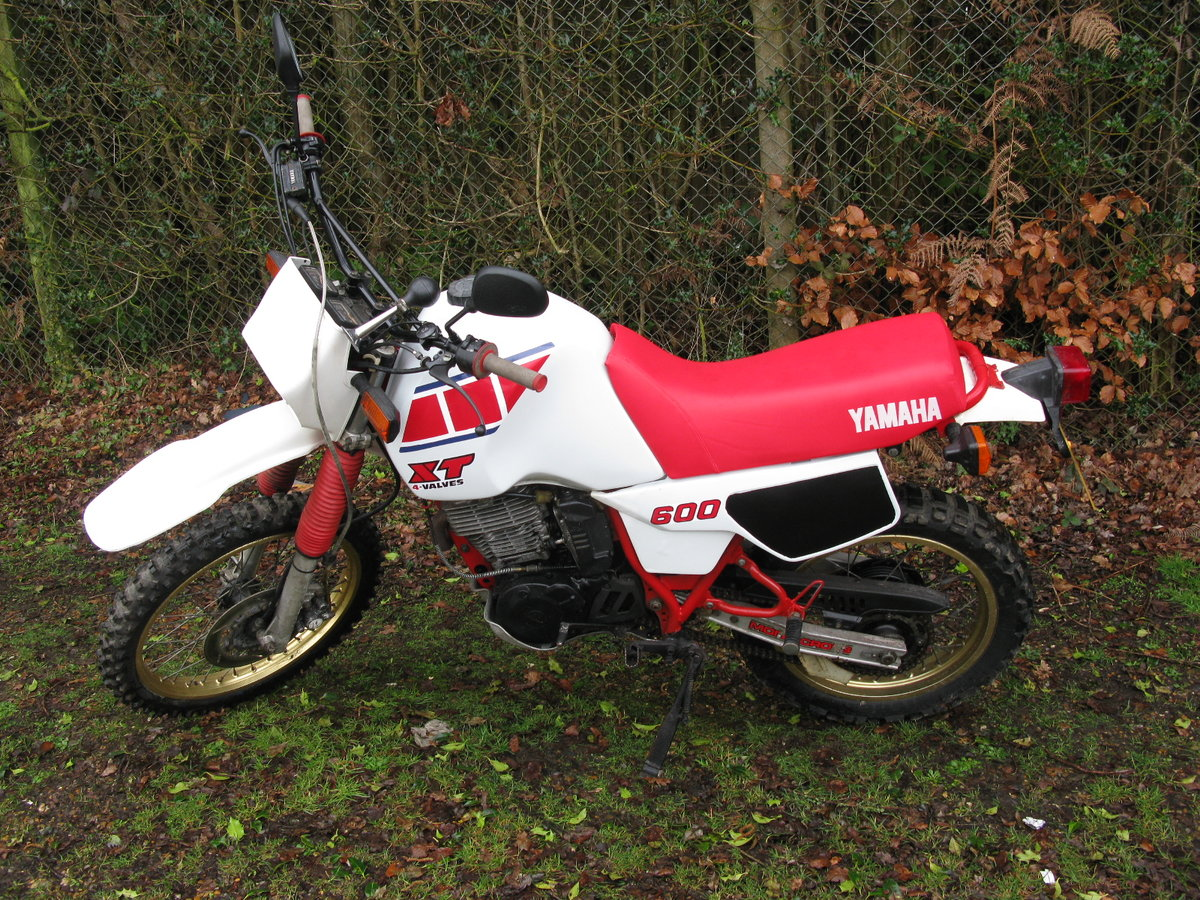 1982 Yamana XT600 (Registered in the UK 2018) For Sale by Auction (picture 1 of 4)
