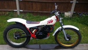 1984 Yamaha TY250  For Sale