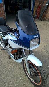 1987 Yamaha XJ900 Garaged for the last 10 yrs