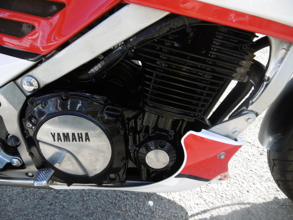 1986 YAMAHA FJ1200 Very original first of the line  For Sale (picture 6 of 6)