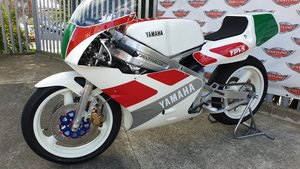 1988 Yamaha TZ250U Road Racer Classic For Sale