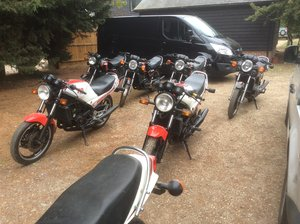 1982 Yamaha RD350LC bikes for sale For Sale