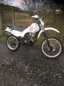 1988 YAMAHA XT350.  Lovely bike