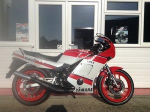 1988 Yamaha RD350 YPVS.