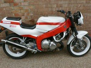 1990 Yamaha 250 X 4cylinder Exup. 45bhp. Get noticed.