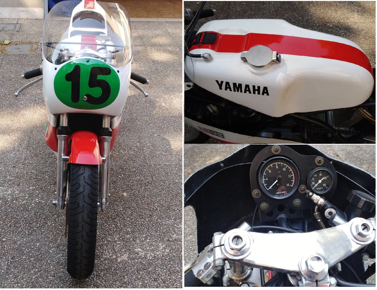 1979 Yamaha TZ 250 GP For Sale (picture 3 of 6)