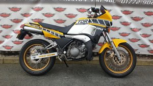 Picture of 1987 Yamaha TDR250 YPVS 2 Stroke Sports Classic For Sale