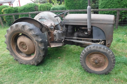 1954 FERGUSON TE20 GREY FERGIE TRACTOR SEE VID CAN DELIVER