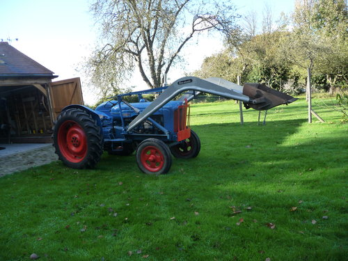 1956 Fordson Major E1A  For Sale (picture 1 of 6)