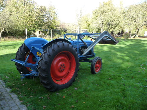 1956 Fordson Major E1A  For Sale (picture 2 of 6)