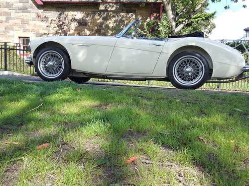 1963 Austin Healey 3000 Mk2 BJ7  in Old English White For Sale (picture 1 of 6)