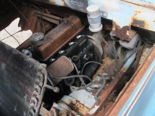 Amphicar 770 Project For Sale (picture 6 of 6)