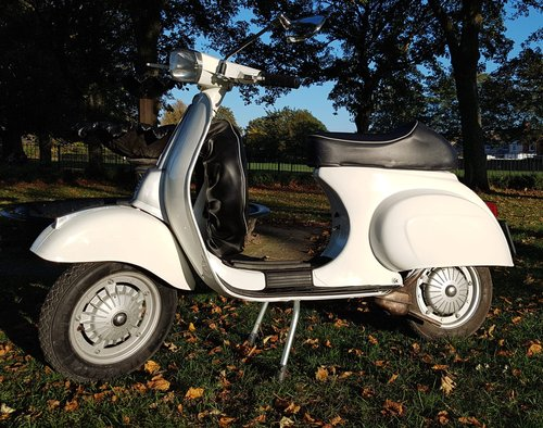 Vespa Special 50 CC 1981 For Sale (picture 3 of 6)