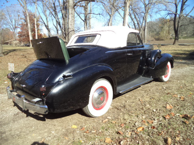 1937 LaSalle Dual Sidemount/Rumble Seat Convertible For Sale (picture 6 of 6)