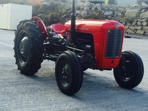 1961 Massey Ferguson MF35 Petrol For Sale