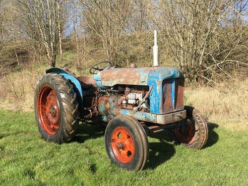 1954 Fordson Major Diesel *NO RESERVE* Tractor at Morris Leslie SOLD by Auction (picture 1 of 6)