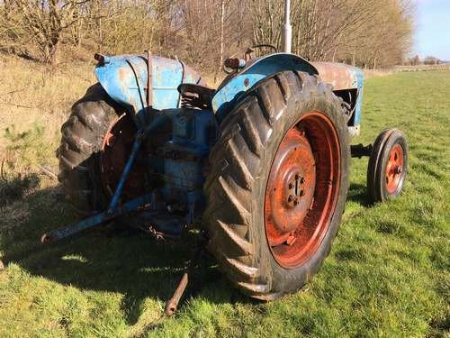 1954 Fordson Major Diesel *NO RESERVE* Tractor at Morris Leslie SOLD by Auction (picture 3 of 6)