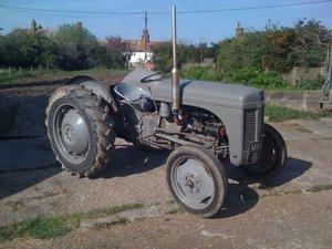 1950 TE20 Ferguson For Sale