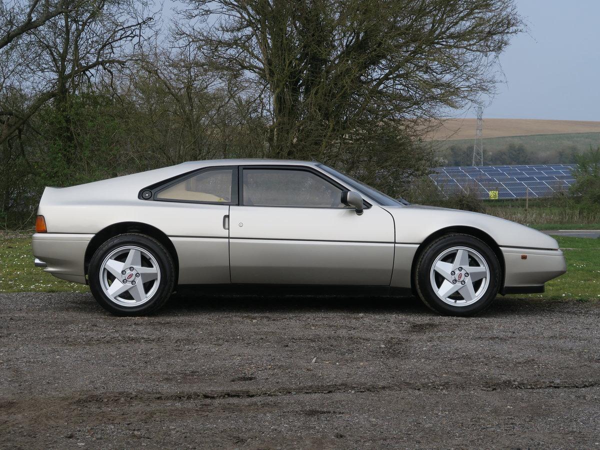 1988 Venturi MVS 200 Coupe For Sale (picture 2 of 6)