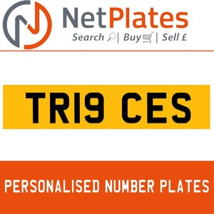 TR19 CES PERSONALISED PRIVATE CHERISHED DVLA NUMBER PLATE