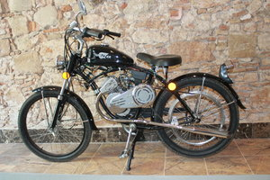 WHIZZER PANTHER – 2003 For Sale by Auction
