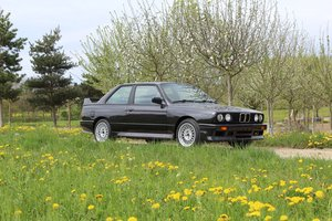 BMW M3 E30 For Sale by Auction