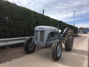 1954 Ferguson TEA-20 Tractor at Morris Leslie Auction 25th May For Sale by Auction