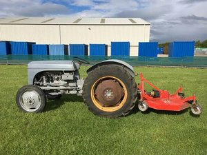 1952 Ferguson TEC-20 With Mower at Morris Leslie Auction  For Sale by Auction