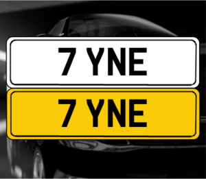 7 YNE For Sale