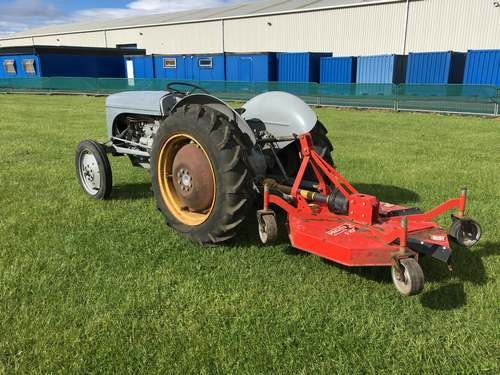 1952 Ferguson TEC-20 Narrow Petrol Tractor at Morris Leslie SOLD by Auction (picture 3 of 6)
