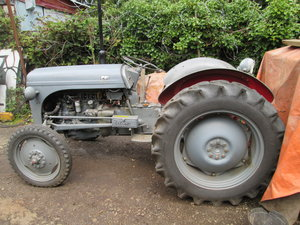 1954 ferguson tractor
