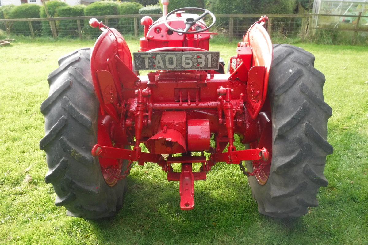 1957 DAVID BROWN 25D GREAT RUNNING DIESEL VINATGE TRACTOR For Sale (picture 3 of 6)