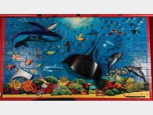 Taj Ma Quarium Display with 356 Manta Ray For Sale by Auction