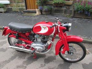 1956 Moto morini briscola