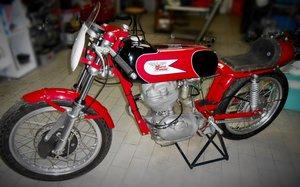 1960 Moto Morini 175 Settebello corsa Agostini For Sale