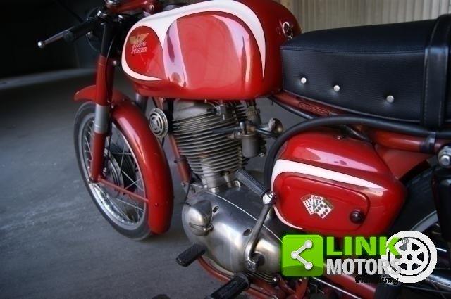 1959 MOTO MORINI TRESETTE 175 SPRINT  TARGA ORO For Sale (picture 6 of 6)