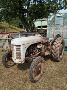 1957 Ferguson T20d tractor barn find TVO road registered For Sale