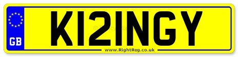 King, Kings, Kingy Number Plate: K121NGY