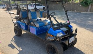 2017 American Custom Golfcart - Like new 1.5k miles $10.9k