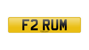 Picture of 2021 F2 RUM For Sale