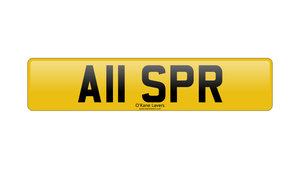 Picture of 2021 A11 SPR For Sale