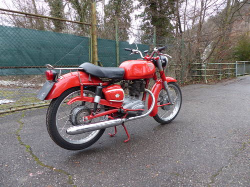 1963 Beautiful Moto Morini Tresette 175, top condition For Sale (picture 4 of 6)