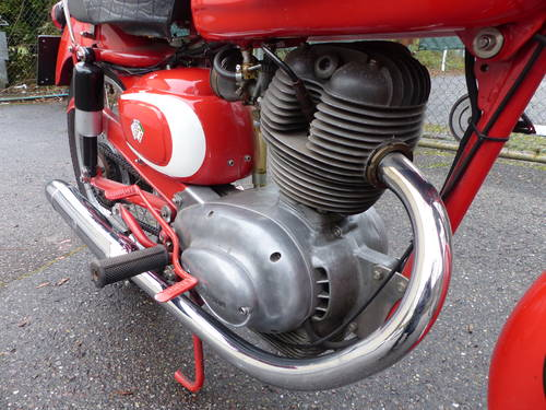 1963 Beautiful Moto Morini Tresette 175, top condition For Sale (picture 6 of 6)