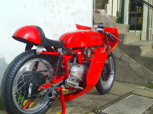 1961 AERMACCHI HARLEY DAVIDSON ALA D'ORO 250 SOLD (picture 2 of 6)