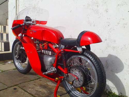 1961 AERMACCHI HARLEY DAVIDSON ALA D'ORO 250 SOLD (picture 4 of 6)