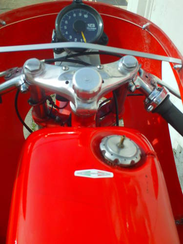 1961 AERMACCHI HARLEY DAVIDSON ALA D'ORO 250 SOLD (picture 5 of 6)