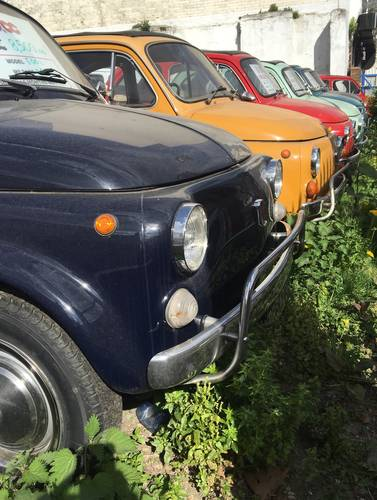 1970 The best selection of classic Fiat 500s in the UK For Sale (picture 1 of 6)