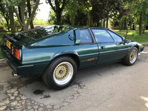 1980 LOTUS ESPRIT WANTED For Sale (picture 3 of 6)